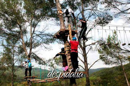 circuito aventura bosque1 445x296 - Circuito de aventuras en el bosque