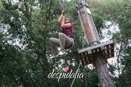 circuito aventura bosque2 445x296 - Circuito de aventuras en el bosque