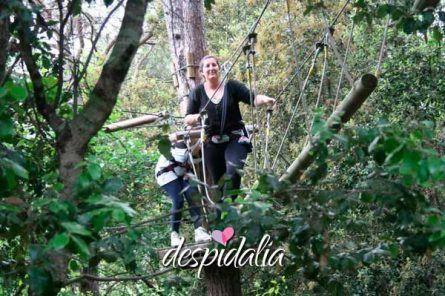 circuito aventura bosque4 445x296 - Circuito de aventuras en el bosque