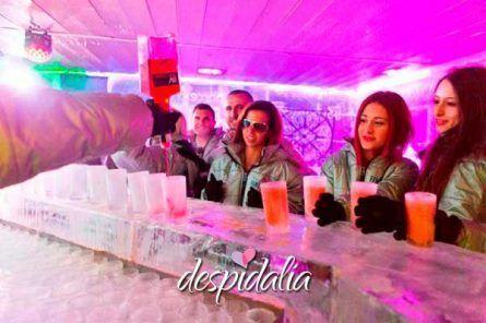 icebar barcelona3 445x296 - Ice Bar Barcelona + Consumición