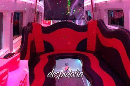 Mini Disco Bus