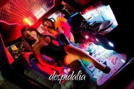 stripper limusina 445x296 - Show de stripper dentro de limusina