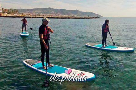 stand up sitges1 445x296 - Excursión Paddle Surf en Sitges