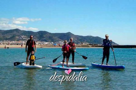 stand up sitges2 445x296 - Excursión Paddle Surf en Sitges