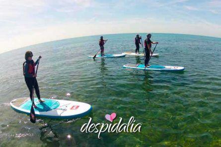 stand up sitges3 445x296 - Excursión Paddle Surf en Sitges