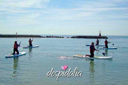 stand up sitges4 445x296 - Excursión Paddle Surf en Sitges