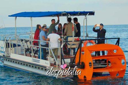 beer sangria boat bike4 445x296 - Barco a Pedales con Cerveza y Sangria